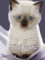 LES VOTES POUR LE FORUM 345205jaivot2