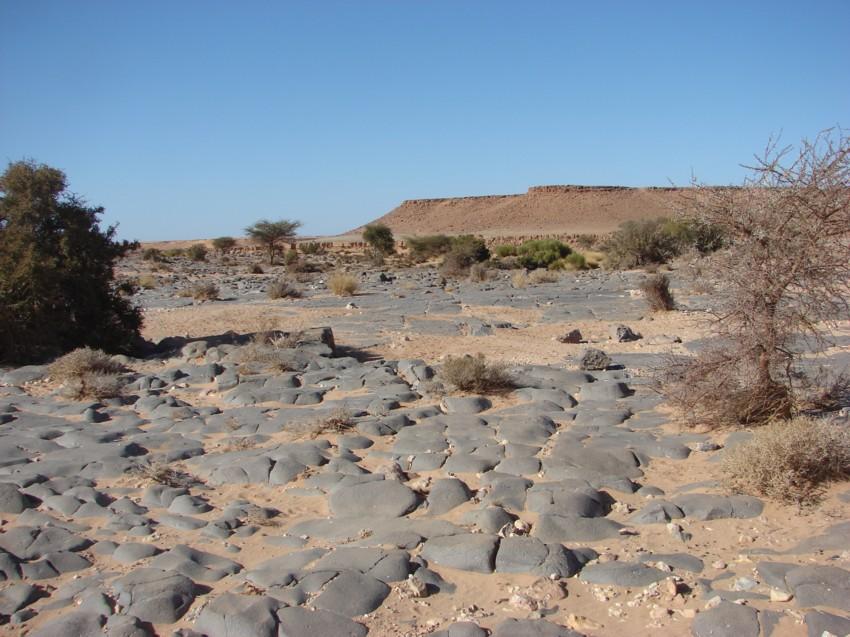 Le Grand Sud du Maroc - II 346408101