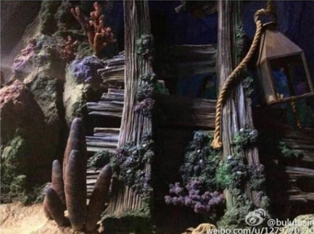 [Shanghai Disneyland] TREASURE COVE (POTC:...Sunken Treasure/Captain Jack's Stunt) - Page 5 347687w87