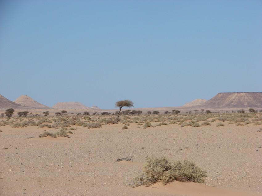 Le Grand Sud du Maroc - II 348381097