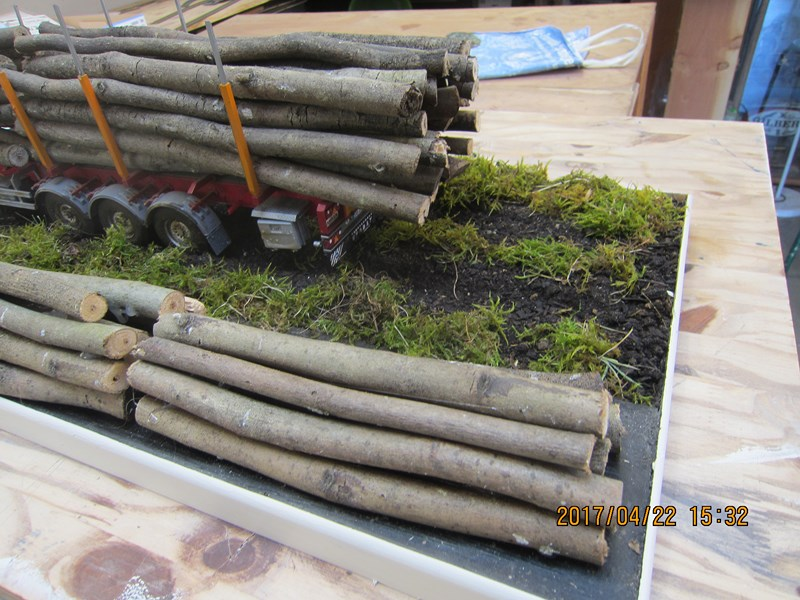Le bois et le transport 350561IMG4472Copier
