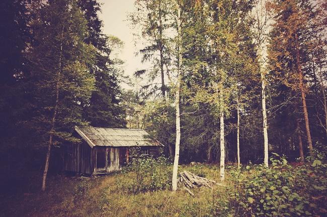 Photos Territoires et Paysages  - Page 7 352270image3Copie