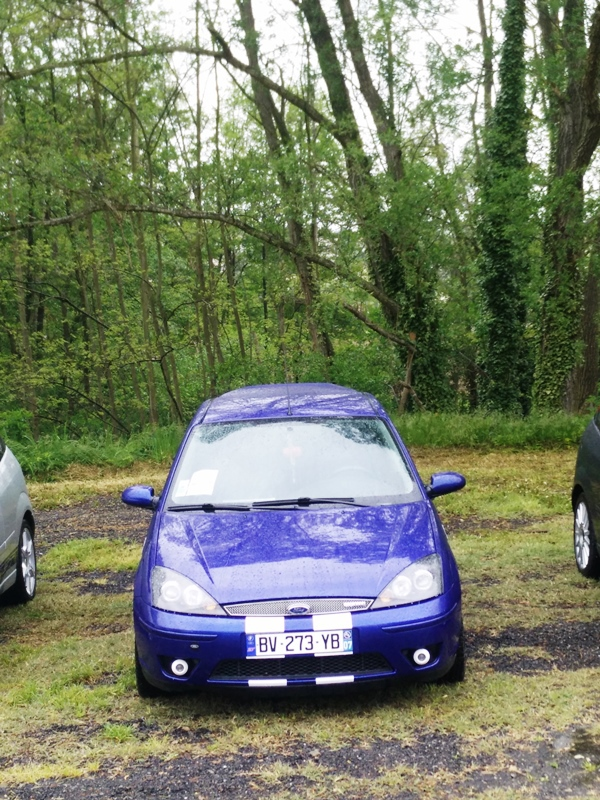 17e Meeting Ford du 1er mai  352802IMG20160501151742