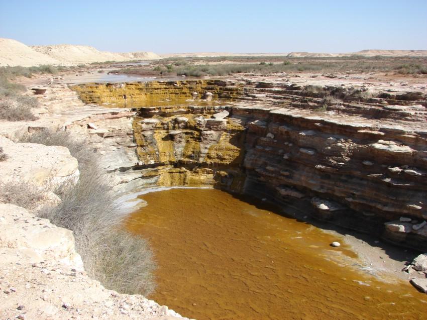 Le Grand Sud du Maroc - II 354185019
