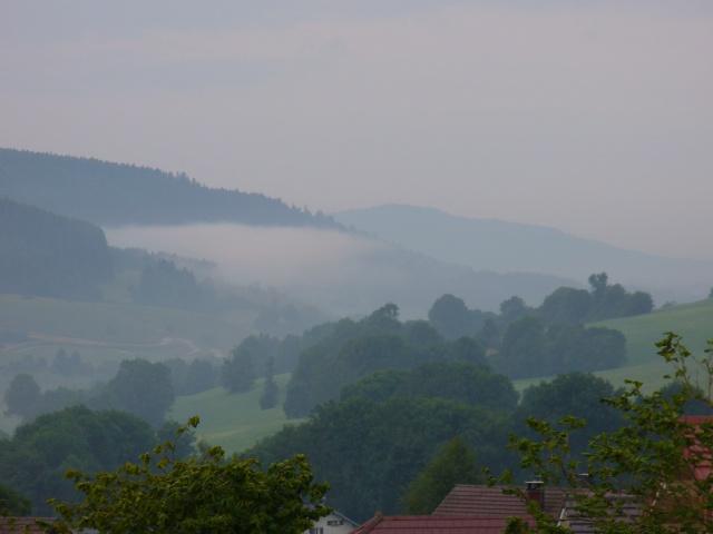 Quelques photos prises dans Le Doubs 355039P1080010