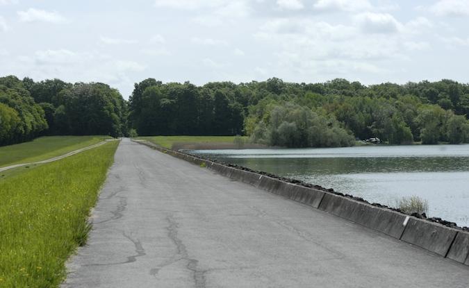 Balade au Lac du Der (51-52) - weekend du 23-24 mai 2015 - Page 3 355863DSC0024