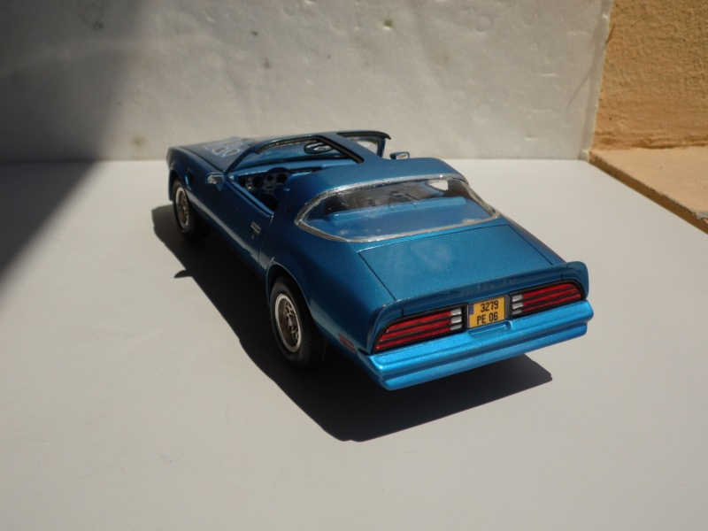 Pontiac Trans-am '78 -1000 jours- 357786SAM7161