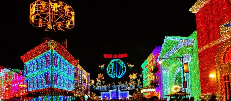 [18-31 octobre 2014] Voyage de noces à Walt Disney World et à Universal - Page 20 358975Osborn2