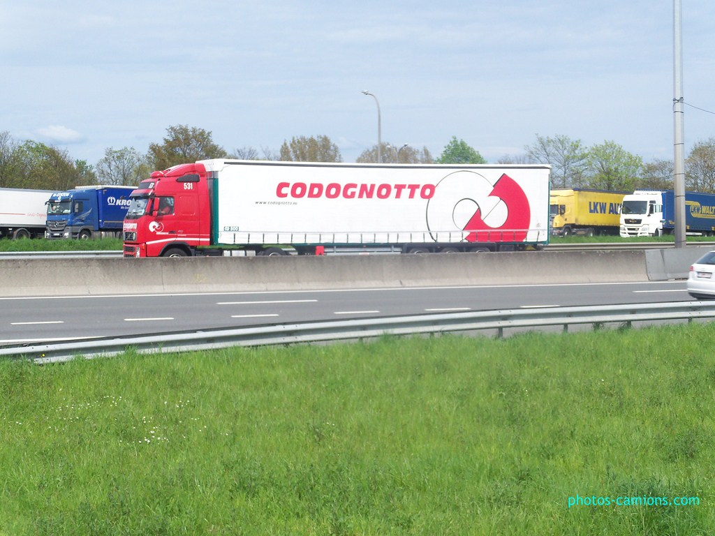 Codognotto (Salgareda)  367512photoscamions30Avril2012141
