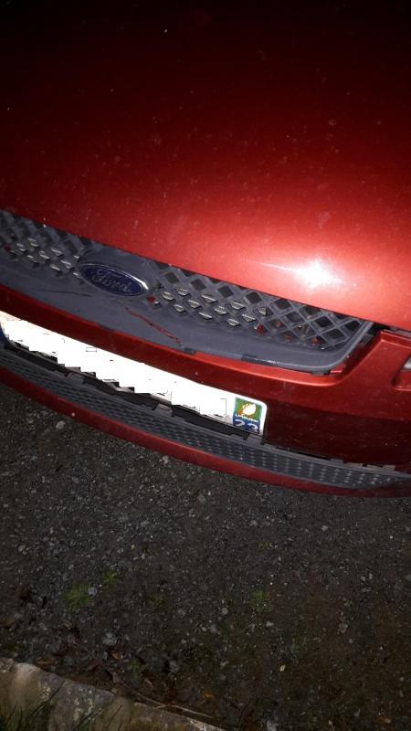 Fiesta Mk5 : idées et conseil réparation PC, suite choc chevreuil 36763720160208201126