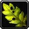 Les vertus des plantes, tome II : Compagnon 368256Invmischerb11
