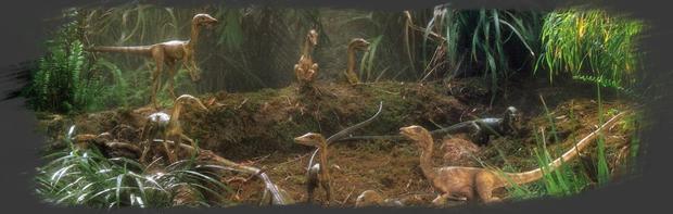 La Ferme des Compsognathus