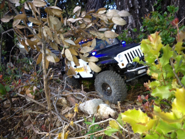 AXIAL SCX10 Jeep JK SHERIFF !! - Page 4 3708737075