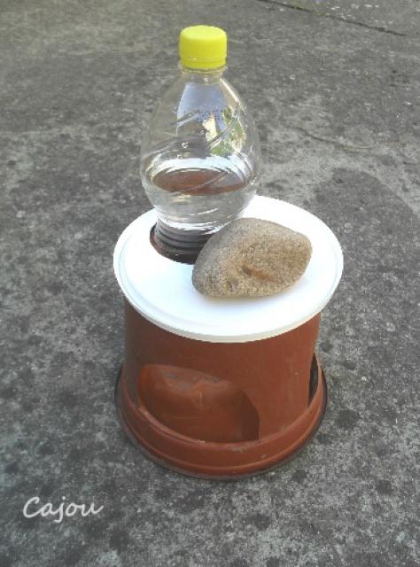 Coupelle d'eau 372027abreuv3