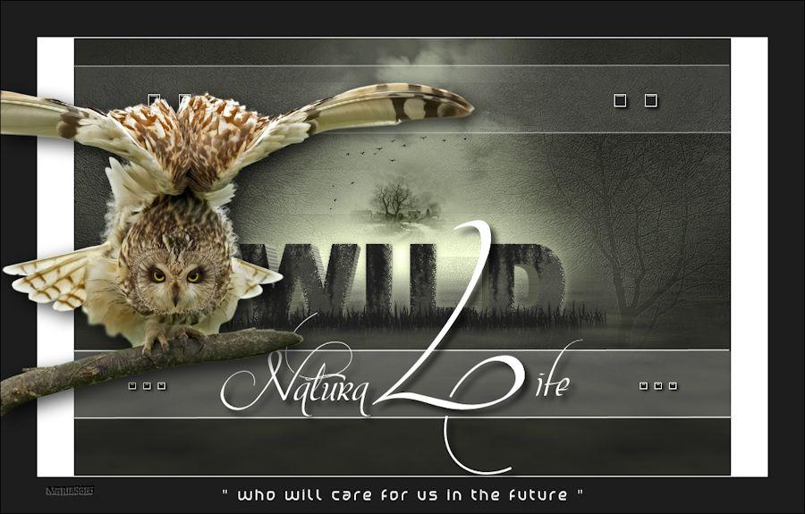 Natura Life 374162atuto