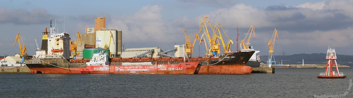 Captain Tsarev 3788671V4B4859L
