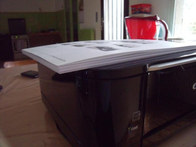 Honda N360 au 1/9 papercraft. 380157DSCF42611