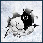 DarkZero Design' 382004member