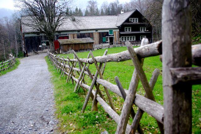 barrières à bétail 384054IMGP6347