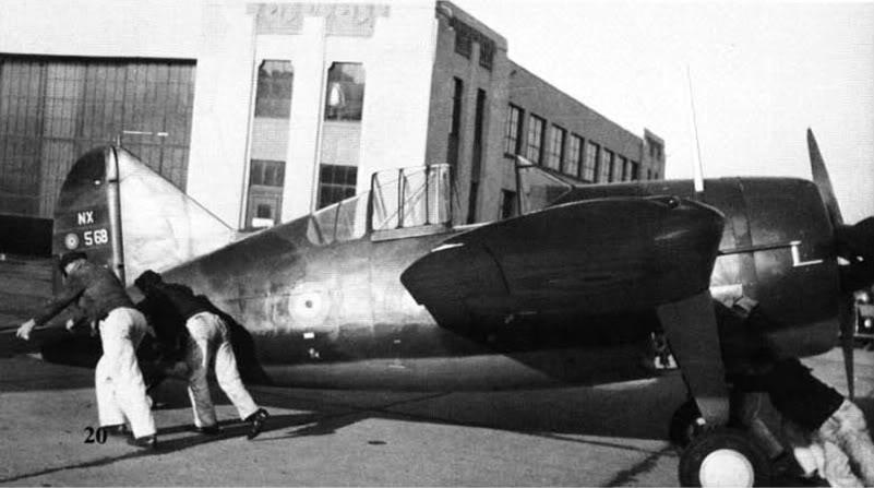 Brewster B-339B Buffalo 1/48 Tamiya.....Terminé! 384663Camo4