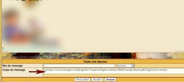 """Partie """"corps du message"""" trop petite pour écrire 386223428842amitie"""