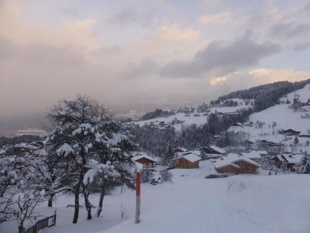 CR du 3eme Agnellotreffen (I) : une belle hivernale glaciale ! 386269P1100470
