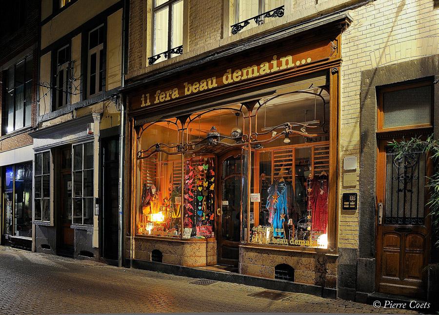 Photos de Nuit à Namur du 19 novembre: les photos. 386468PIE2165coets27952