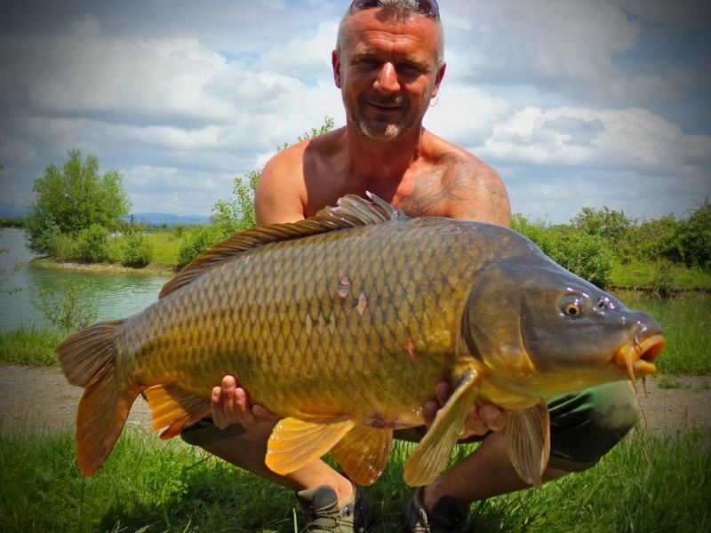 Vos plus jolis poissons (en dehors du poids) 3871651000938