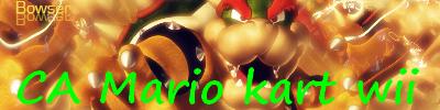 CA Mario kart wii !