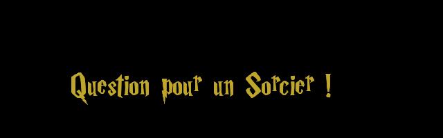Question pour un sorcier 396194sorcier2