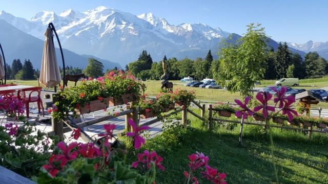 LC8 Rally western Alps - Stella alpina - Alpes Tour 2016  397487selectionalpesTour22