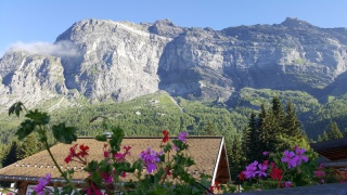 LC8 Rally western Alps - Stella alpina - Alpes Tour 2016  399728selectionalpesTour23