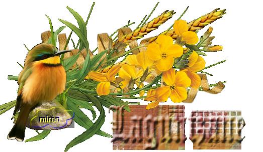 Nombres con L - Página 3 4014454Laguntzane