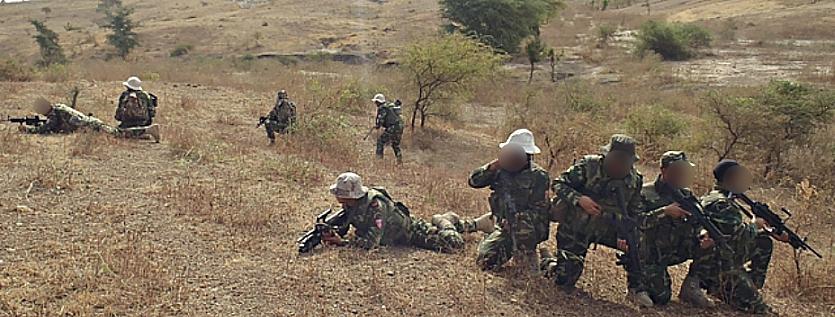 Armée Tunisienne / Tunisian Armed Forces / القوات المسلحة التونسية 404333imagepopup