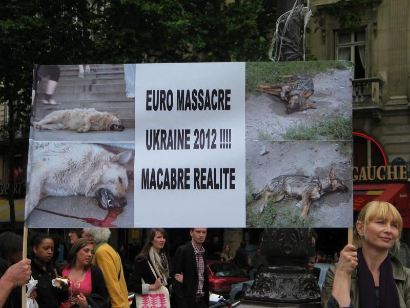 11 - Manifestation contre le massacre des animaux en Ukraine - 9 juin 2012 407344IMG9226