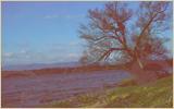 » Le fleuve