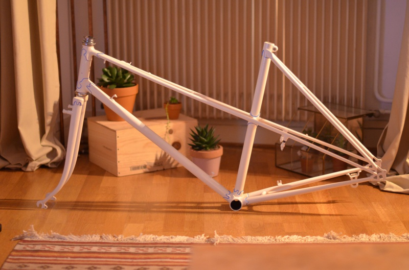 Rénovation Cycles Reinor - Page 2 410548DSC8788