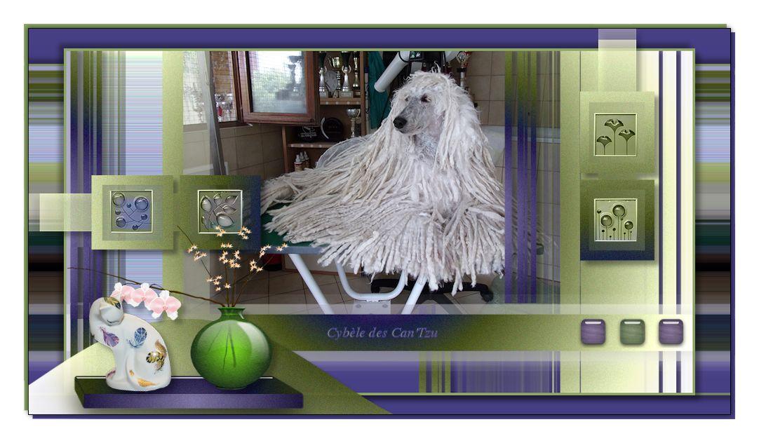 Purple 410631purple