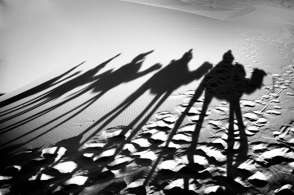 Mes ballades dans le désert de l'Erg Chebbi. 413230DSC2039