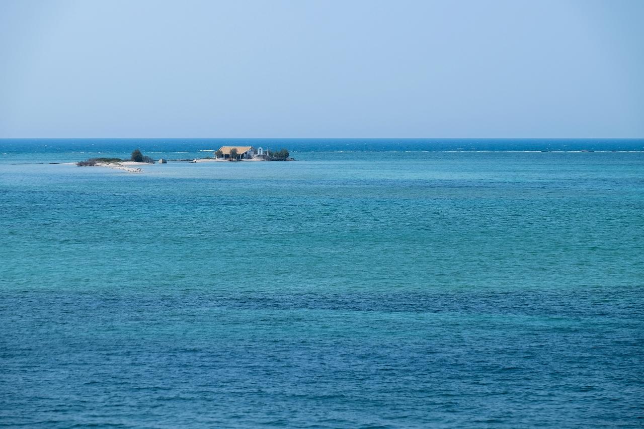 l'île aux moines 415085DSCF123612