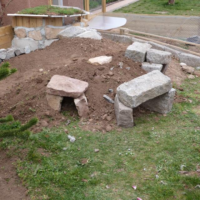 nouveau parc pour ma troupe de horsfieldii - Page 4 417761P1050423
