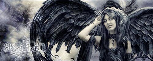 Les ailes de la Nuit 418224Asaliahcopie