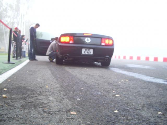 ford mustang BULLITT 2008  420204photosjournemustangDKM010