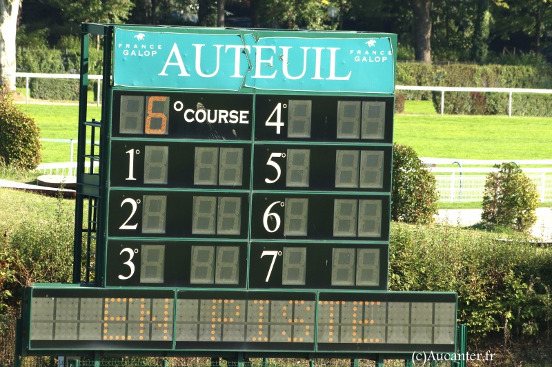 Photos Auteuil 24-09-2016 4231015J6A7332
