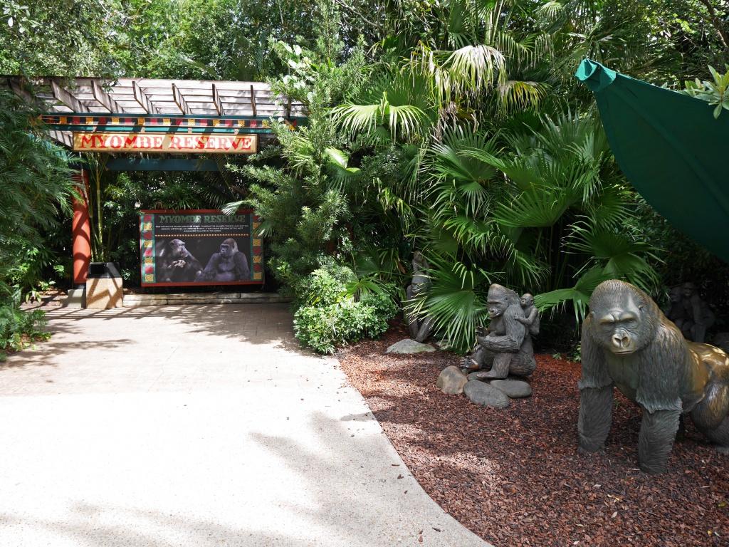 Une lune de miel à Orlando, septembre/octobre 2015 [WDW - Universal Resort - Seaworld Resort] - Page 11 428067P1080916