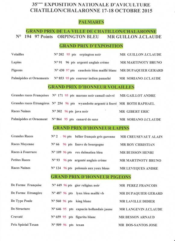 Châtillon s/ Chalaronne 2015 428300Chtillon20151