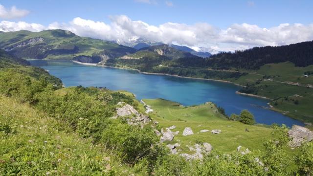 LC8 Rally western Alps - Stella alpina - Alpes Tour 2016  428693selectionalpesTour8