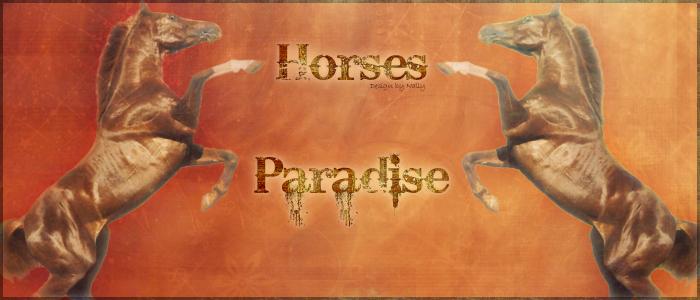 Les Ecuries Virtuelles Horses Paradise