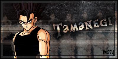 Fiche de Tsundora 429647SignatureTamanegi