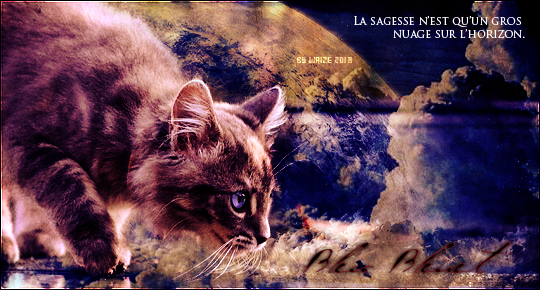 Gazette de la saison des Feuilles Mortes - II PART + Concours Halloween 432698CadeauTata2013